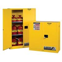 Picture of Safety Cabinets for Flammable Substances
